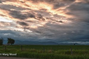 untitled shoot-346_HDR.jpg