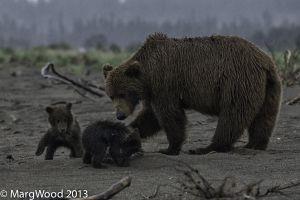 Alaska-12.jpg