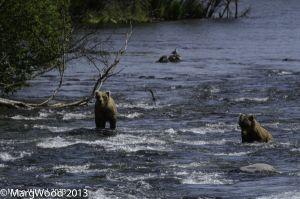 Alaska-48.jpg