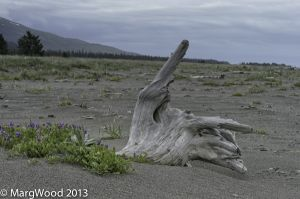 Alaska-62.jpg