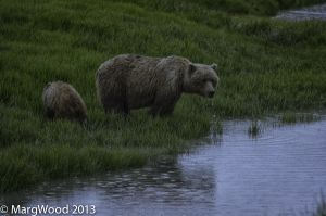 Alaska-63.jpg