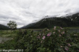 Alaska-72.jpg
